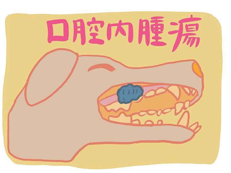 口腔の腫瘍