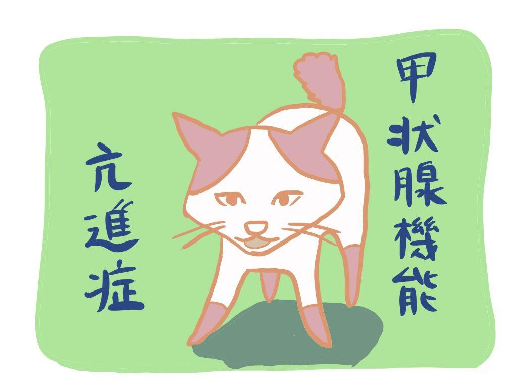 ネコちゃんの甲状腺機能亢進症について